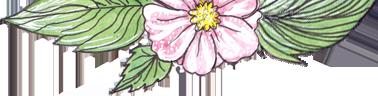 Цветок с листьями